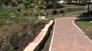 Limestone retaining wall, Tuttle Learning Walk